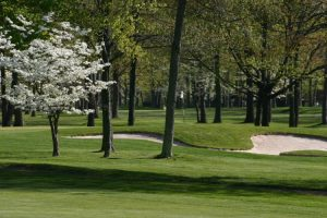 Bowling Green Golf Hole 8
